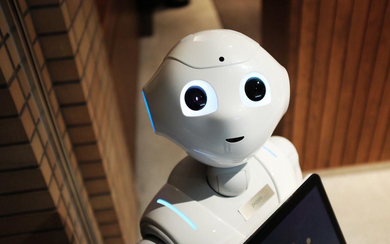 Der menschliche Roboter Pepper